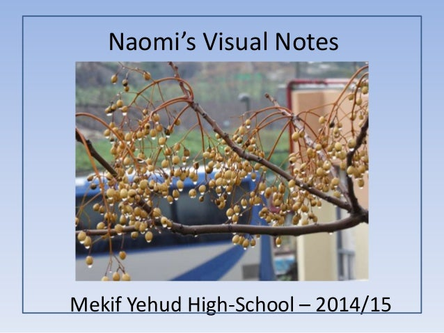 Naomi's Visual Notes Mekif Yehud High-School – 2014/15