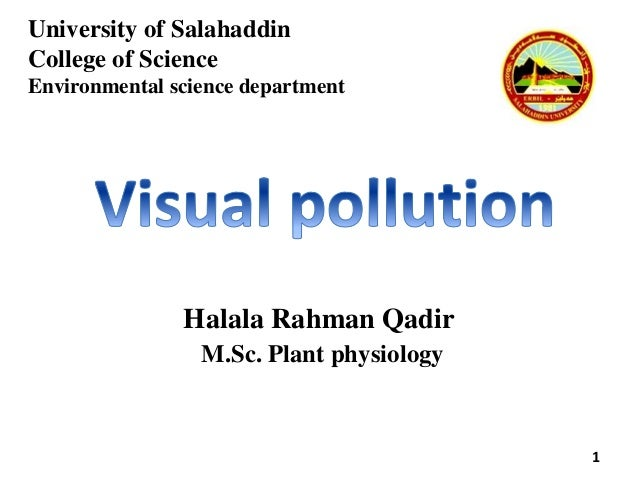 consequences of visual pollution
