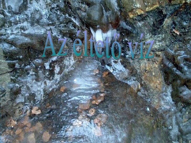 Az éltető víz