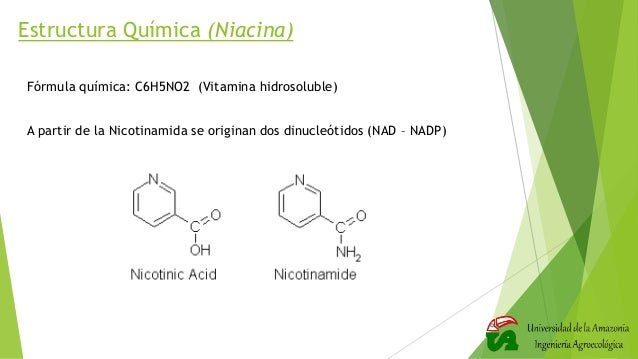 Vitamina Niacina