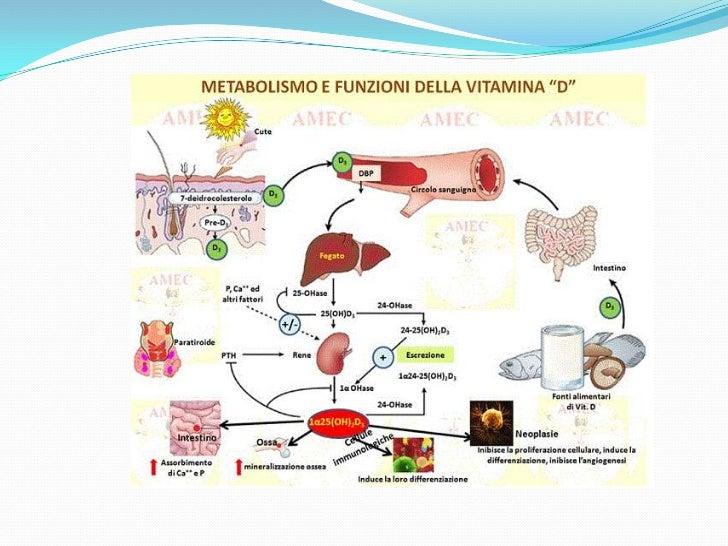 Como quitar rápidamente la agudización atopicheskogo de la dermatitis