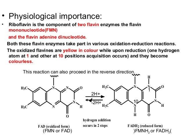 vitaminb2[riboflavin] medicinal chemistry,by p.ravisankar [sources o…, Skeleton