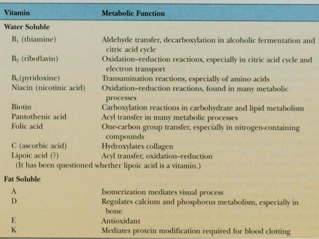 9 Vitamin Penambah Darah yang Wajib Kamu Coba