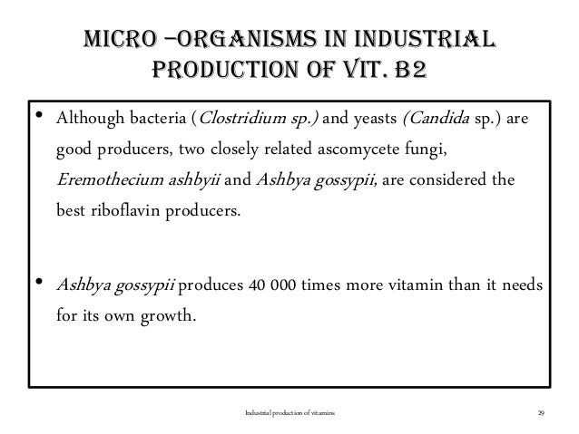 Micro –organisms in industrial production of vit. b2 • Although bacteria (Clostridium sp.) and yeasts (Candida sp.) are go...