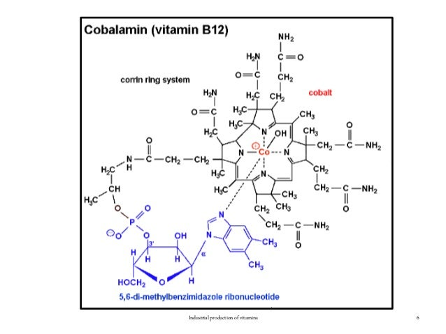 6Industrial production of vitamins