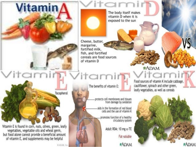 Are Plant Foods A Good Source Of Retinol