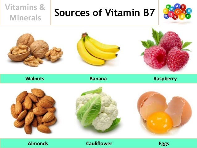 Foods High In Vit Thiamine