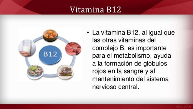 Alimentos ricos en vitamina b12 cianocobalamina - En que alimentos esta la vitamina b12 ...
