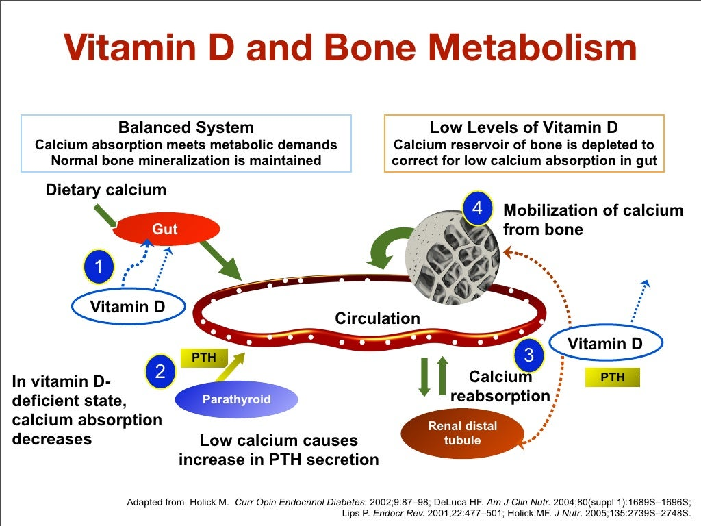 how to help body absorb vitamin d
