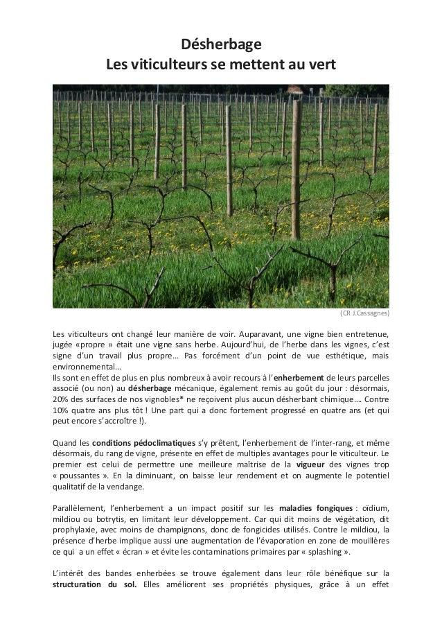 DésherbageLes viticulteurs se mettent au vert(CR J.Cassagnes)Les viticulteurs ont changé leur manière de voir. Auparavant,...
