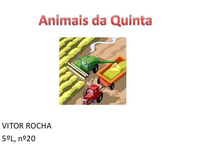 VITOR ROCHA5ºL, nº20