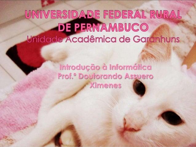 Introdução à Informática Prof.º Doutorando Assuero Ximenes