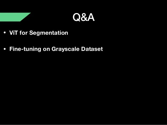 Q&A • ViT for Segmentation • Fine-tuning on Grayscale Dataset