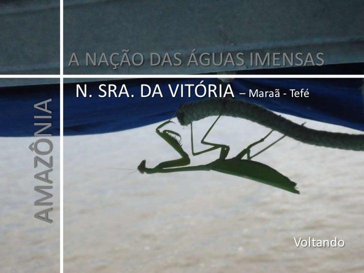 A NAÇÃO DAS ÁGUAS IMENSAS<br />N. SRA. DA VITÓRIA – Maraã - Tefé<br />AMAZÔNIA<br />Voltando <br />