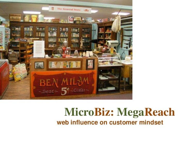 MicroBiz: MegaReachweb influence on customer mindset