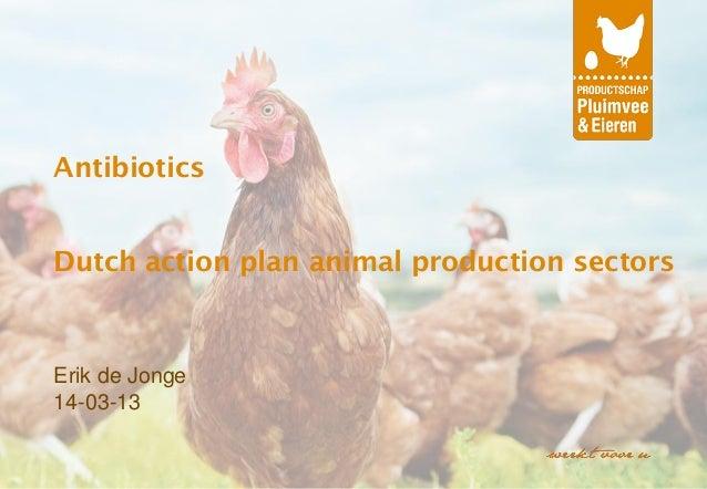 AntibioticsDutch action plan animal production sectorsErik de Jonge14-03-13
