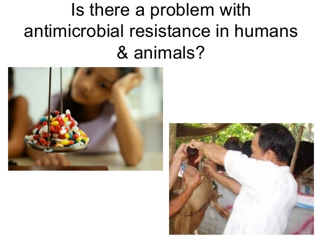 Is there a problem withantimicrobial resistance in humans            & animals?