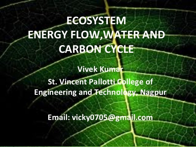ECOSYSTEMENERGY FLOW,WATER AND     CARBON CYCLE             Vivek Kumar    St. Vincent Pallotti College of Engineering and...