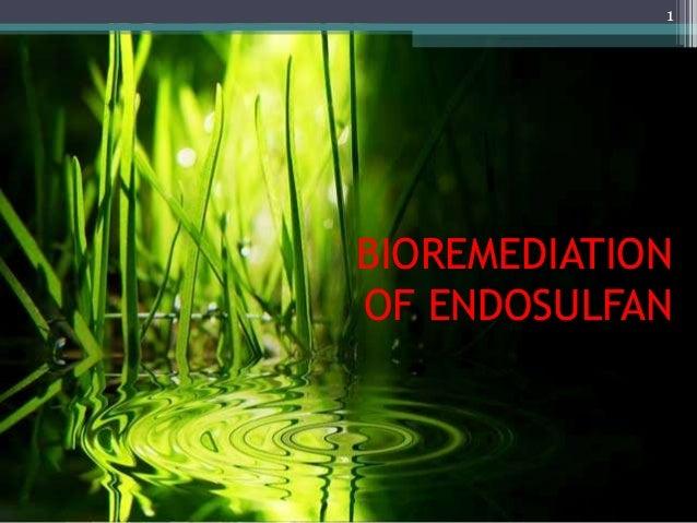 BIOREMEDIATION OF ENDOSULFAN 1