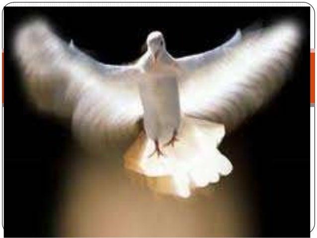 A PAZ Gilberto Gil A paz Invadiu o meu coração De repente, me encheu de paz Como se o vento de um tufão Arrancasse meus pé...