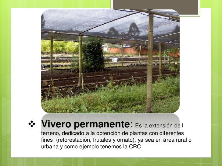 Vivero for Viveros en palencia