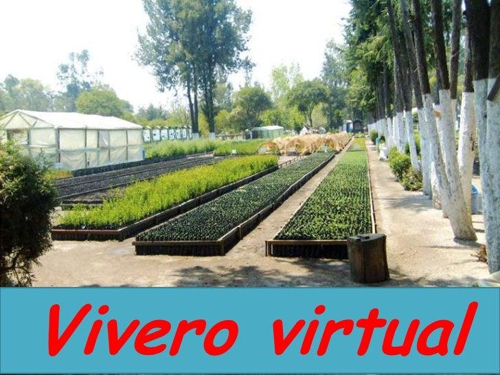 Vivero for Viveros en moreno