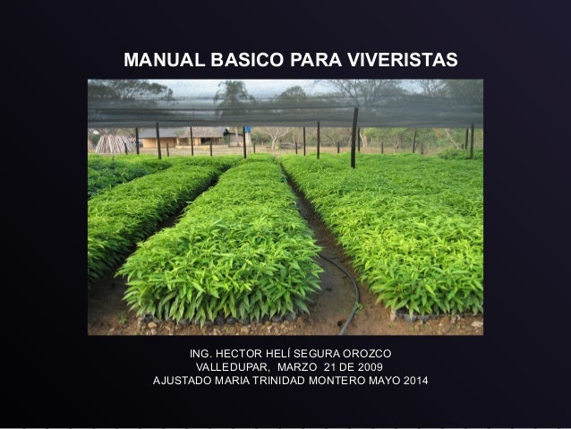 Vivero forestal for Tipos de viveros forestales