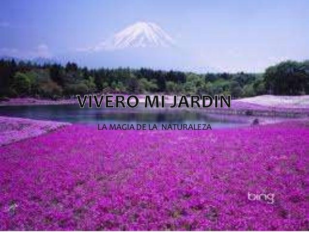 Vivero mi jardin for Vivero tu jardin