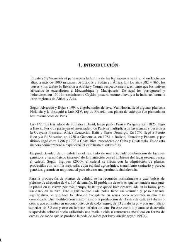 Viveros del cafe 1 for Vivero de cafe pdf