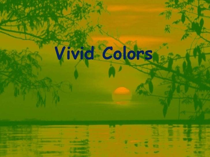 Vivid Colors<br />