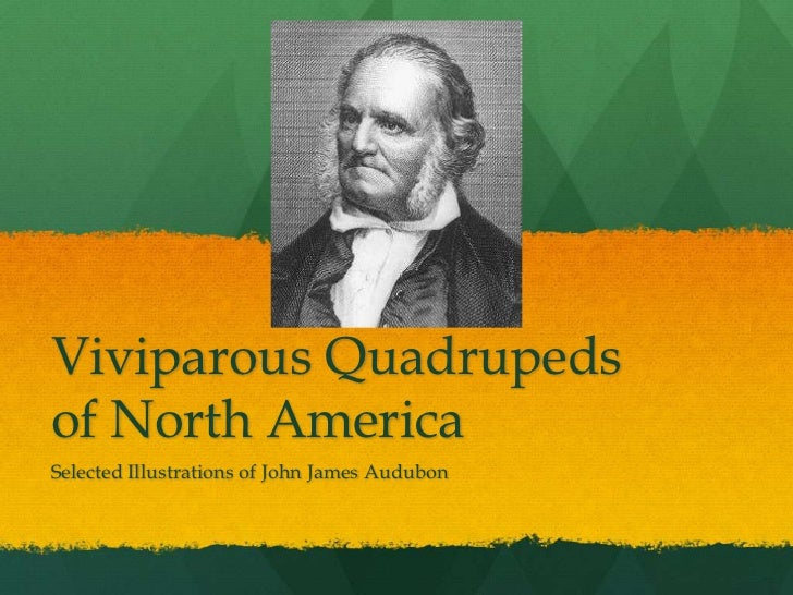Viviparous Quadrupeds of North America<br />Selected Illustrations of John James Audubon<br />