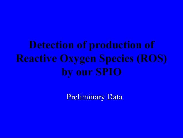 Detection of production of Reactive Oxygen Species (ROS) by our SPIO Preliminary Data
