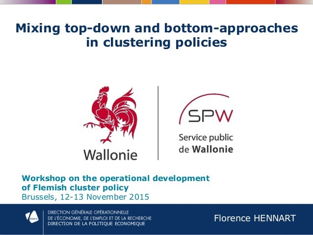 DIRECTION DE LA POLITIQUE ECONOMIQUE Mixing top-down and bottom-approaches in clustering policies Workshop on the operatio...