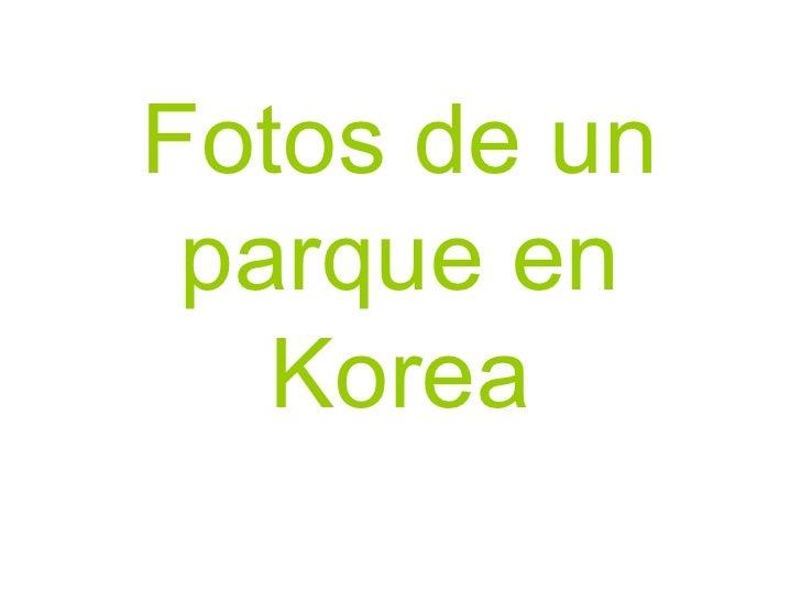 Fotos de un parque en Korea
