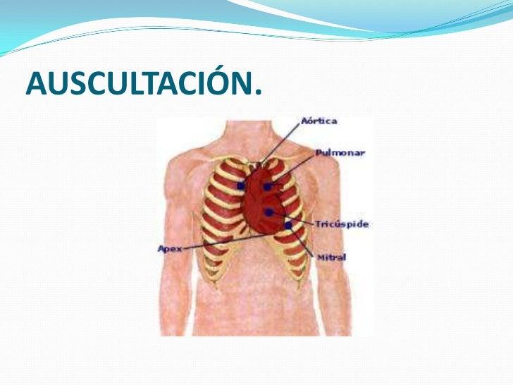 Cap. 23 Válvulas cardiacas