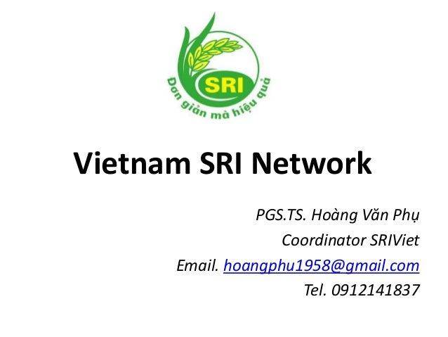 Vietnam SRI Network PGS.TS. Hoàng Văn Phụ Coordinator SRIViet Email. hoangphu1958@gmail.com Tel. 0912141837