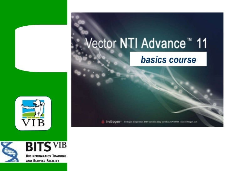 basics course