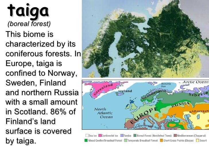 World Geography Vocabulary Illustrated - Norway vegetation map