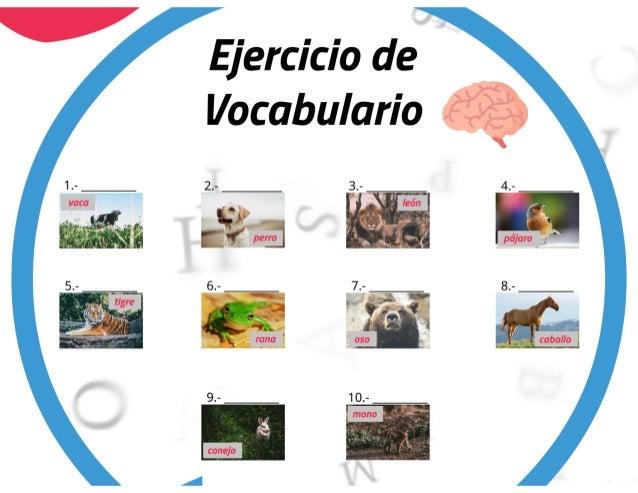 Vocabulario de animales en inglés con imágenes PDF y ejercicio