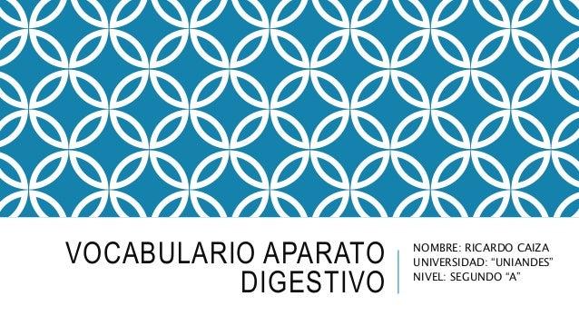 """VOCABULARIO APARATO DIGESTIVO NOMBRE: RICARDO CAIZA UNIVERSIDAD: """"UNIANDES"""" NIVEL: SEGUNDO """"A"""""""