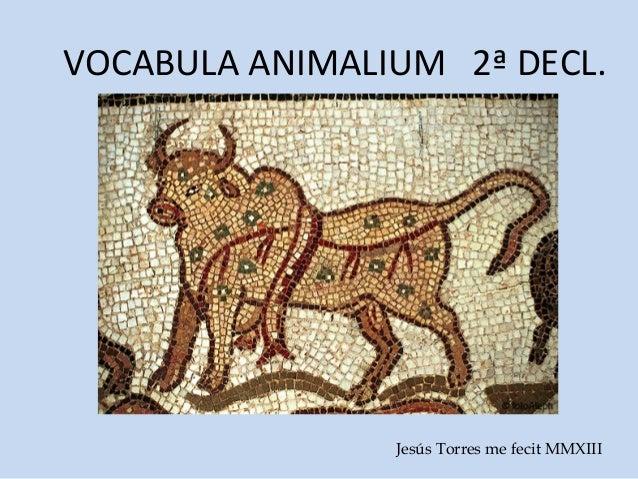 VOCABULA ANIMALIUM 2ª DECL.                Jesús Torres me fecit MMXIII