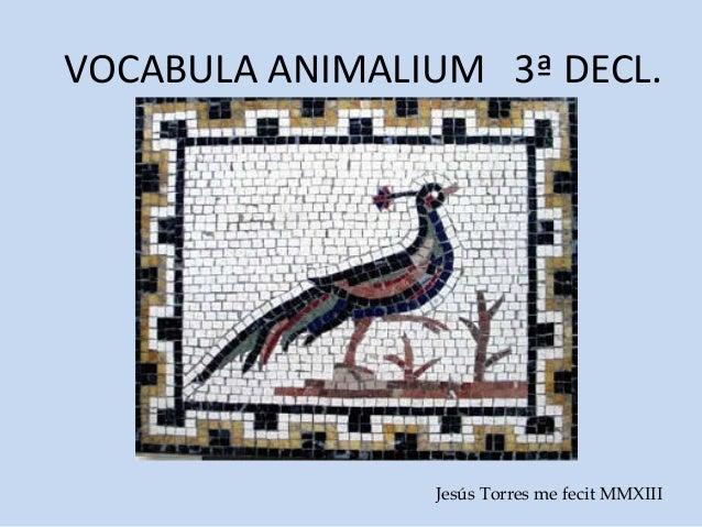 VOCABULA ANIMALIUM 3ª DECL.                Jesús Torres me fecit MMXIII