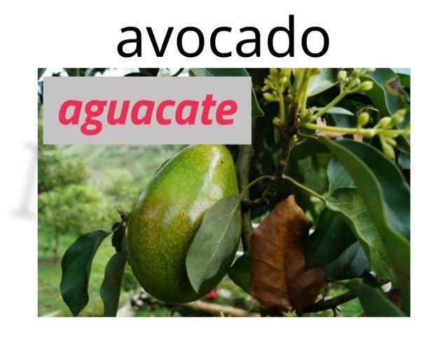 Vocabulario de frutas en inglés con imágenes PDF y ejercicio