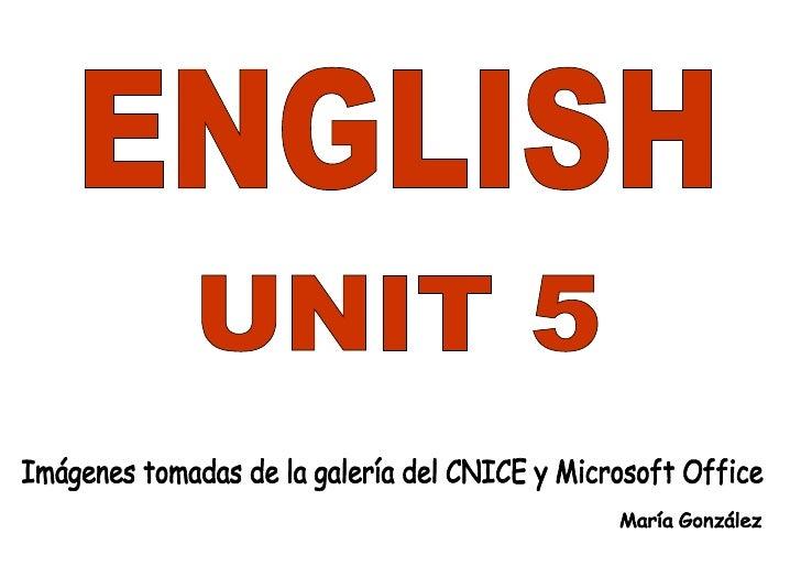 Vocabulary Unit 5