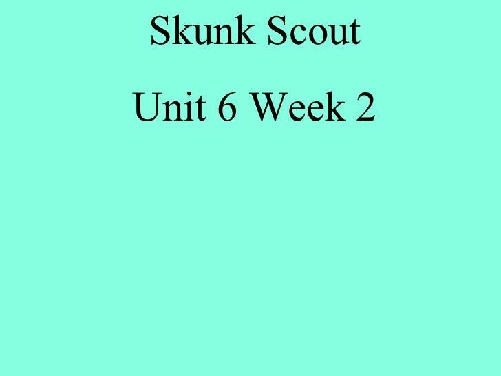 Skunk Scout Unit 6 Week 2