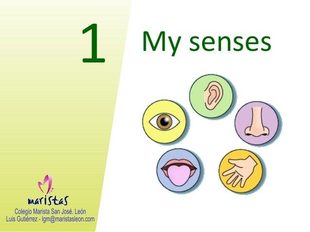 Vocabulary unit 1. my senses