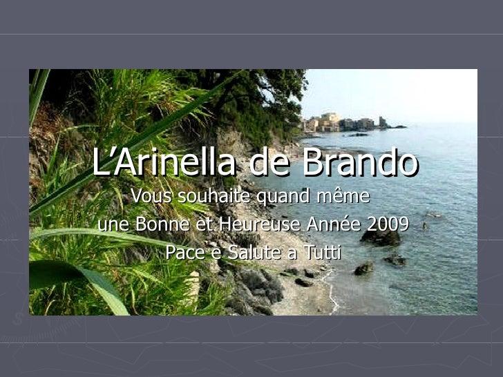 L'Arinella de Brando Vous souhaite quand même  une Bonne et Heureuse Année 2009 Pace e Salute a Tutti