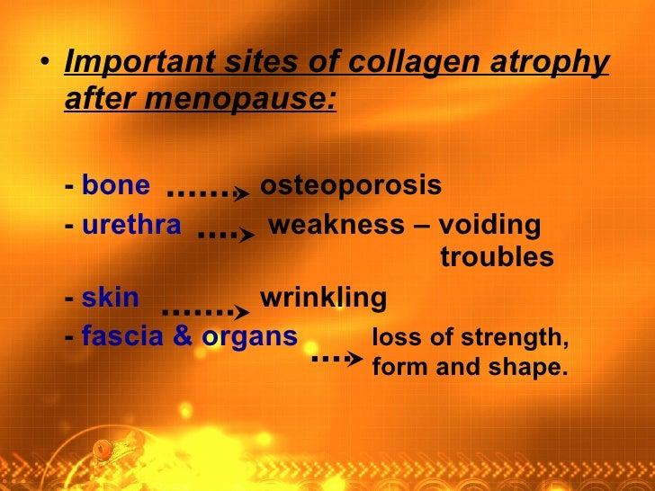 <ul><li>Important sites of collagen atrophy after menopause: </li></ul><ul><li>-  bone     osteoporosis </li></ul><ul><li>...