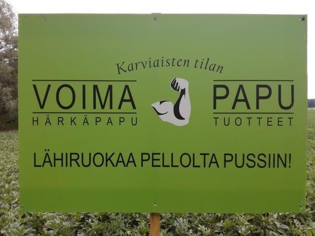 Tilamme sijaitsee Angelniemellä, nykyistä Salon kuntaa