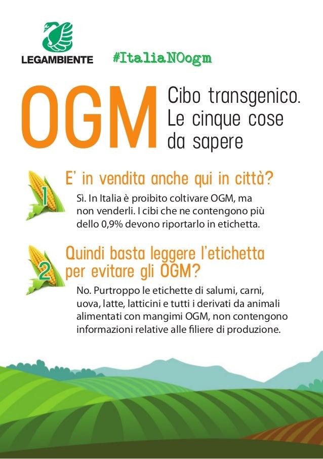 #ItaliaNOogm Cibo transgenico. Le cinque cose da sapere 1 Sì. In Italia è proibito coltivare OGM, ma non venderli. I cibi ...